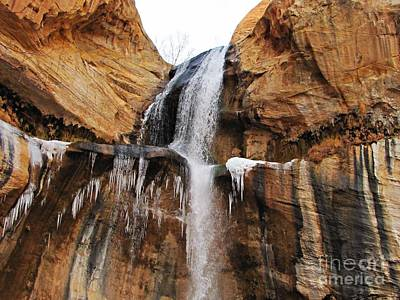 State Love Nancy Ingersoll - Calf Creek Falls - Iced by Sheryl Young
