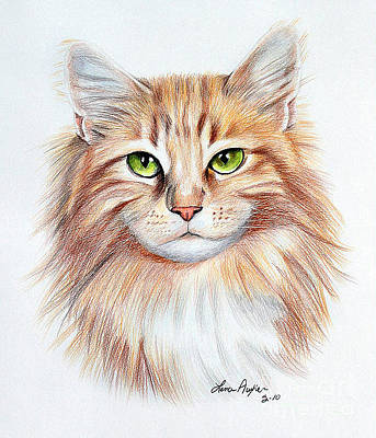 Drawing - Calico Cat by Lena Auxier