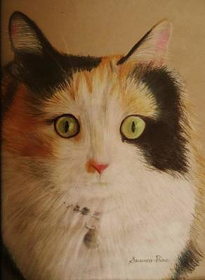 Colored Pencil Drawing - Calico Cat by Savanna Paine