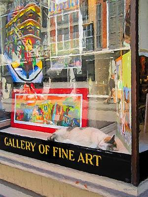 Photograph - Calico Cat Sleeping - Art Gallery Window New Orleans by Rebecca Korpita