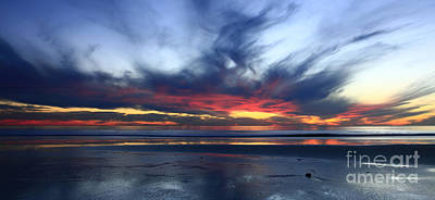 Photograph - California Blue by John F Tsumas