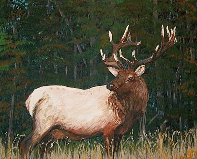 Painting - California Bull Elk by Sharon Duguay