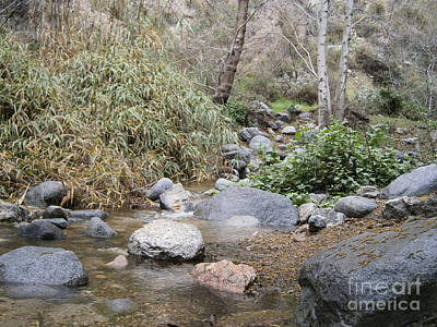 Photograph - California Canyon 6 by Drew Shourd