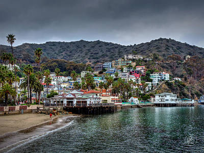 Photograph - California - Catalina Island 006 by Lance Vaughn