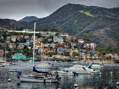 Photograph - California - Catalina Island 012 by Lance Vaughn