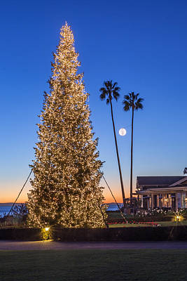 Photograph - California Christmas by Cliff Wassmann