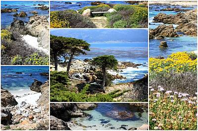 Photograph - California Coast Collage by Carol Groenen