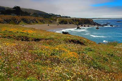 Photograph - California Coast by Gary Slawsky