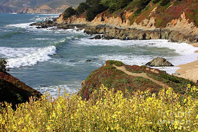 Photograph - California Coast Overlook by Carol Groenen
