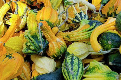 California Fruit Stand Autumn Harvest Art Print by Cindy Miller Hopkins