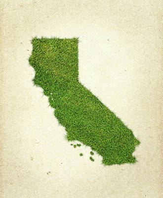San Diego Mixed Media - California Grass Map by Aged Pixel