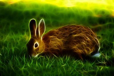 California Hare - 0291 Art Print by James Ahn