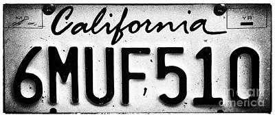 Photograph - California Muff by John Rizzuto