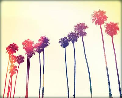 California Palms Vi Original