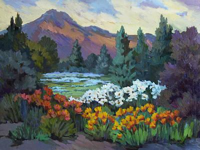 Garden Mountain Painting - California Poppies At Santa Barbara by Diane McClary