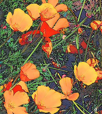Digital Art - California Poppies by Jim Pavelle