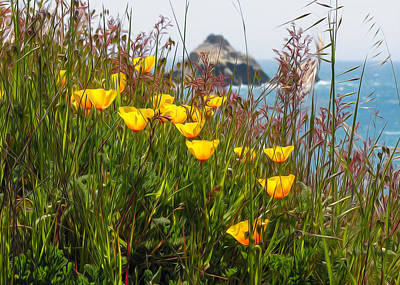 Photograph - California Poppies by Kathleen Bishop