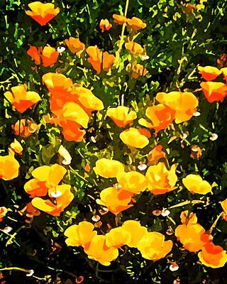 Photograph - California Poppies by Timothy Bulone