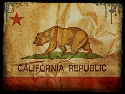 Mixed Media - California Republic by Michelle Dallocchio