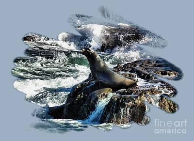 Rocky Coast Photograph - California Sea Lions - P6 by Scott Cameron