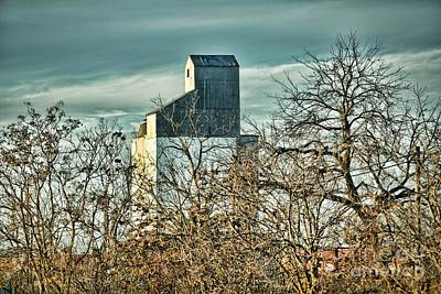 Photograph - California Silo by Kim Wilson