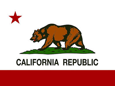 State Of California Digital Art - California State Flag by Daniel Hagerman