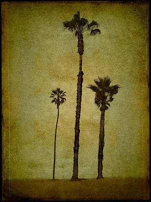 Digital Art - California Trees by Eduardo Tavares