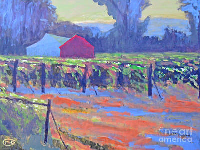 Napa Valley Vineyard Painting - California Vineyard by Kip Decker