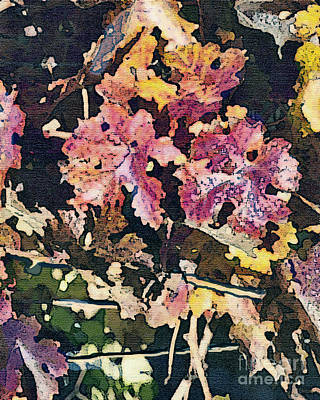 California Vineyard Series Fall Grape Leaves Art Print by Artist and Photographer Laura Wrede