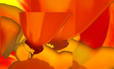 Abstract California Poppies Photograph - Calipoppies Abstract by Lyn  Perry