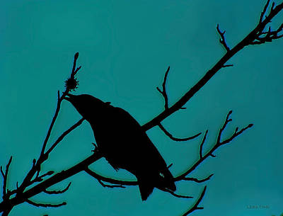 Photograph - Call Of The Crow Silhouette On Blues 2 by Lesa Fine