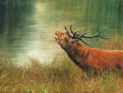 Stag Painting - Call Of The Wild 2 by David Stribbling