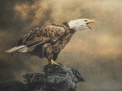 Art Print featuring the photograph Call Of The Wild by Brian Tarr