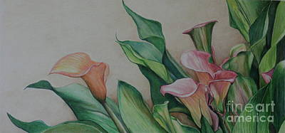Calla Lilies Art Print by Charlotte Yealey