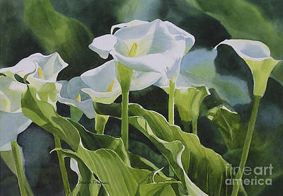 White Flowers Painting - Calla Lilies Horizontal Design by Sharon Freeman