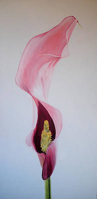 Painting - Calla Lilli by Claudia Goodell