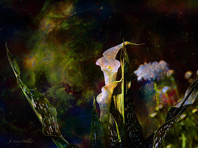 Digital Art - Calla Lily Abstract by J Larry Walker