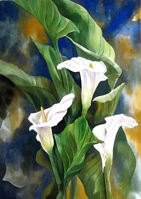 Calla Lily Art Print by Alfred Ng
