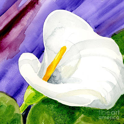 Calla Lily Close Up Art Print by Annie Troe