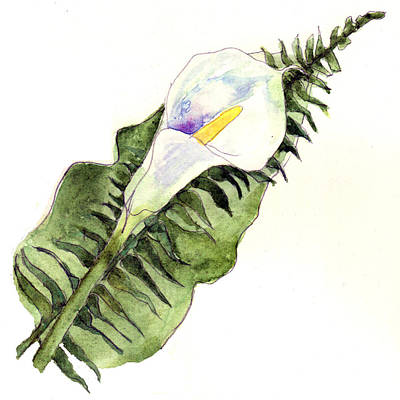 Calla Lily Painting - Calla Lily Flower Art by Blenda Studio