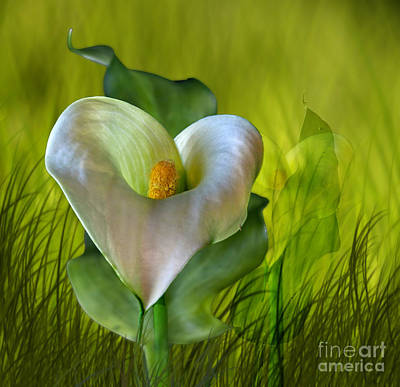 Art Print featuring the digital art Calla Lily Glow by Shirley Mangini
