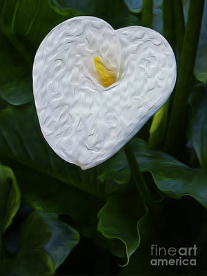 Digital Art - Calla Lily I by Kenneth Montgomery