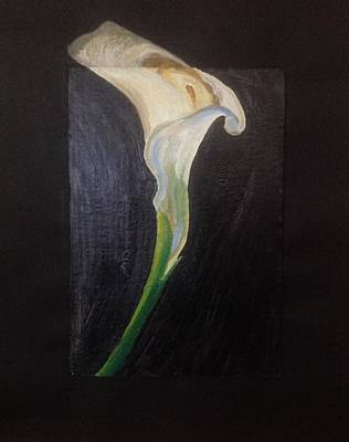 Chalk Pastel Mixed Media - Calla Lily by Kerrie B Wrye