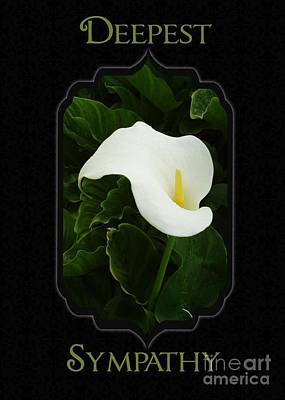 Digital Art - Calla Lily Sympathy by JH Designs
