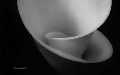 Photograph - Calla Slide Bw by Donna Blackhall