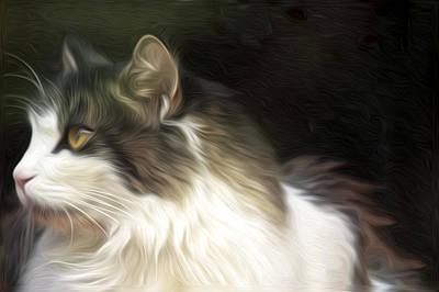 Fuzzy Digital Art - Calling All Cat Lovers by David Kehrli