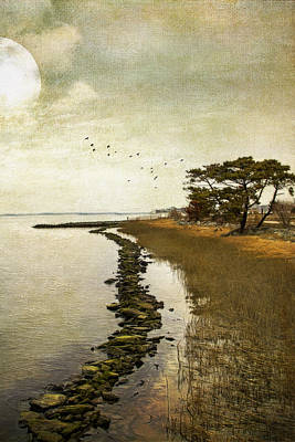 Calm At The Waters Edge Art Print
