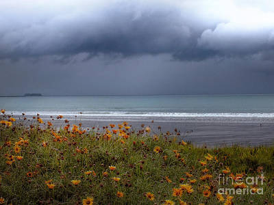 Photograph - Calm Before The Storm by Karen Lewis