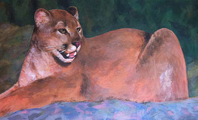Cougar Painting - Calm Cougar by Monica Margarida