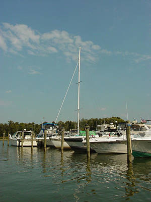 Art Print featuring the photograph Calm Day At The Marina by Dorothy Maier